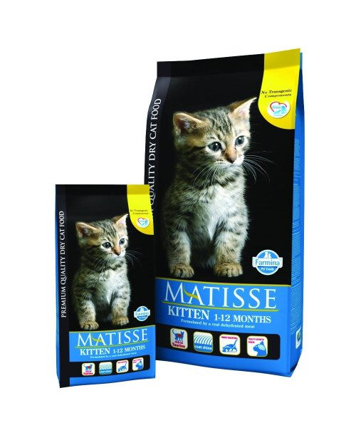 Matisse - Kitten 400g