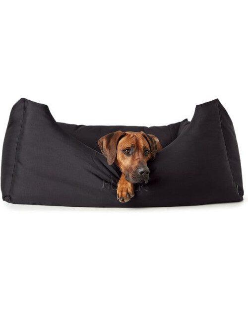 Hunter krevet Gent - antibakterijski XL + pas