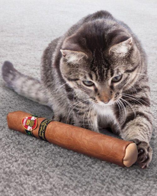 Kong Better Buzz, cigara